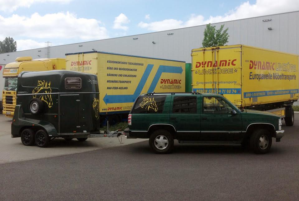 Dynamic Umzüge Fuhrpark - Pferdetransport