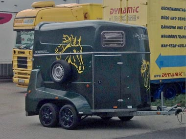 Pferdetransporte - Dynamic Umzüge